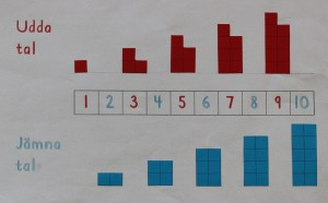 Udda och jämna tal tallinje och talblock